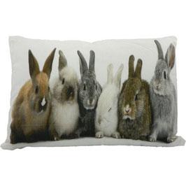 Tiermotivkissen Kaninchengruppe - 50 x 10 x 50 cm