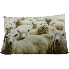 Tiermotivkissen Schafe - 60 x 10 x 40 cm