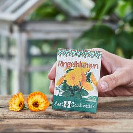 Saatgeschwister - Ringelblumen