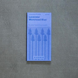 "Piccolo Seeds - Lavendel ""Munstead Blue"""