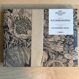 Alte Erdbeersorten - Magic Garden Seeds