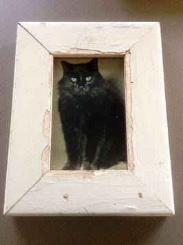 Rahmen Katze-20%