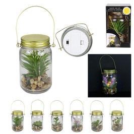 LAMPE MASON JAR PLANTE LED