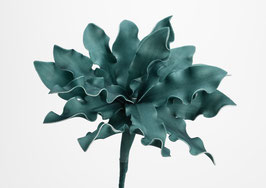 Fleur cumbia émeraude