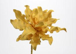 Fleur Cumbia Moutarde