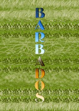 Hoodie Barbados Nr. 1