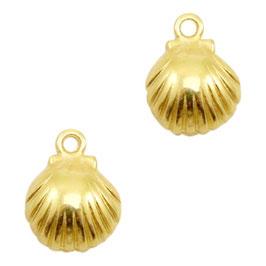 Muschel Gold