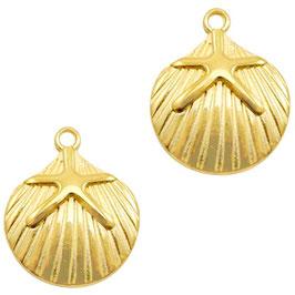 Muschel mit Stern Gold