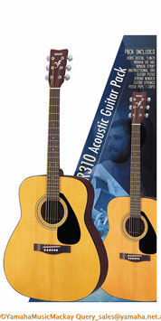 GIGMAKER 310 Acoustic Guitar