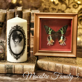 Macabre Family 5