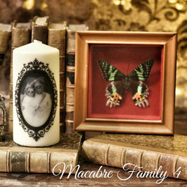 Macabre Family 4