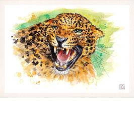 LEOPARD | leopard | A4
