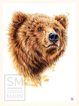 BÄR | bear | 30x40