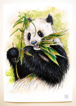 PANDA | panda | A4