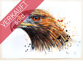ADLER | eagle | A4