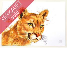 PUMA | cougar | A4