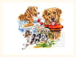 RETTUNGSHUNDE  | rescue dogs | 30x40