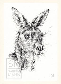 KÄNGURU | kangaroo | A4