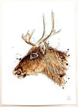 RENTIER | reindeer | A4