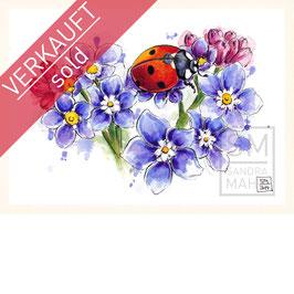 MARIENKÄFER | ladybug | A5