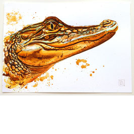 KROKODIL | crocodile | A4