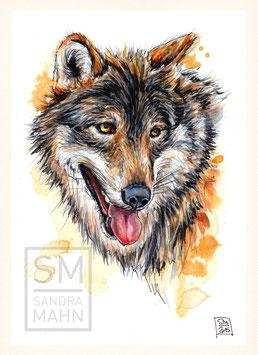 WOLF | wolf | A5