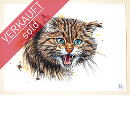 WILDKATZE | wildcat | A4