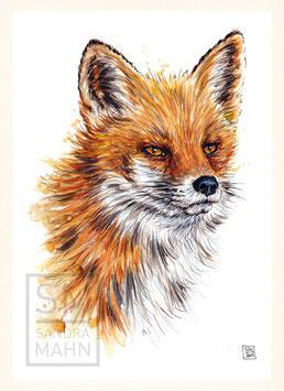 FUCHS | red fox | A4