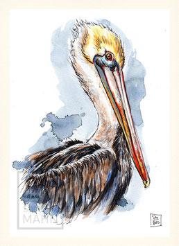 PELIKAN | pelican | A5
