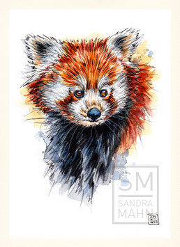 ROTER PANDA | red panda | A5