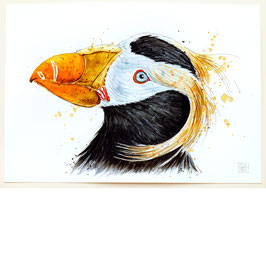 GELBSCHOPFLUND | tufted puffin | A4