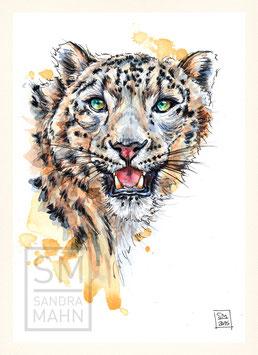 SCHNEELEOPARD | snow leopard | A5