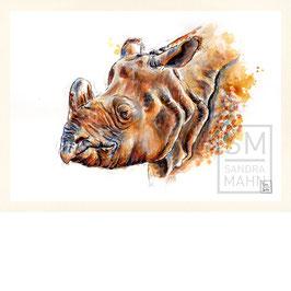 NASHORN | rhinoceros | A4