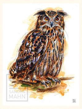 UHU | eagle-owl | 30x40
