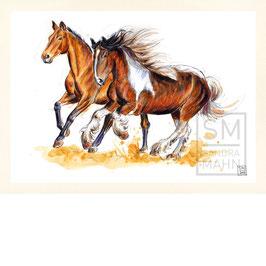 PFERDE | horses | A4