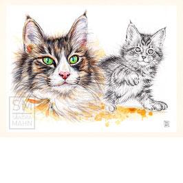 KATZE | cat | 30x40