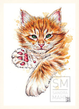 KATZE | cat | A5