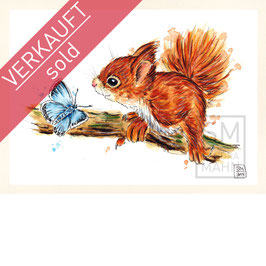 EICHHÖRNCHEN | red squirrel | A5