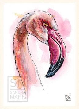 FLAMINGO | flamingo | A5