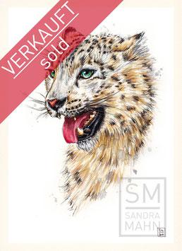 SCHNEELEOPARD | snow leopard | A4