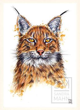 LUCHS | lynx | A4