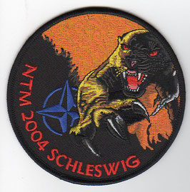 German Air Force patch AG 51 NATO Tiger Meet 2004 Tornado IDS