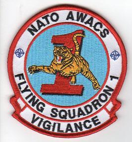 NATO patch 1 Squadron NATO AWACS AEW WING