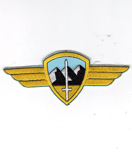 German Air Force patch 1. Luftwaffendivision