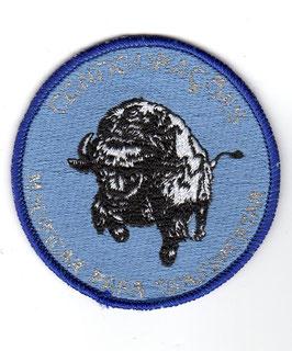 """Portuguese Air Force patch 501 Esquadra """"Bisontes"""""""