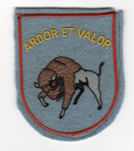 Belgian Air Force patch 3eme Wing Tactique / 3rd Tactical Wing (1970-1987) Mirage V