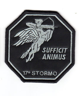 Italian Air Force patch 17° Stormo