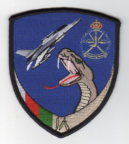Royal Air Force of Oman patch 18 Squadron F-16C/D