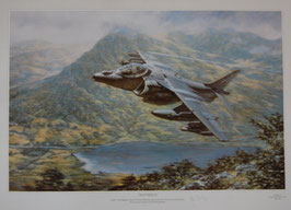 Aviation Art Print - ´MAVERICK´ - RAF No.20 (R) Sqn Harrier by Ronald Wong; signed by Mr. John farley, Harrier Chief Test Pilot 1983