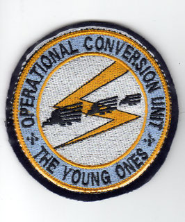 Indian Air Force OCU Operational Conversion Unit Ops patch ´The Young Ones´ MiG-21   - obsolete -